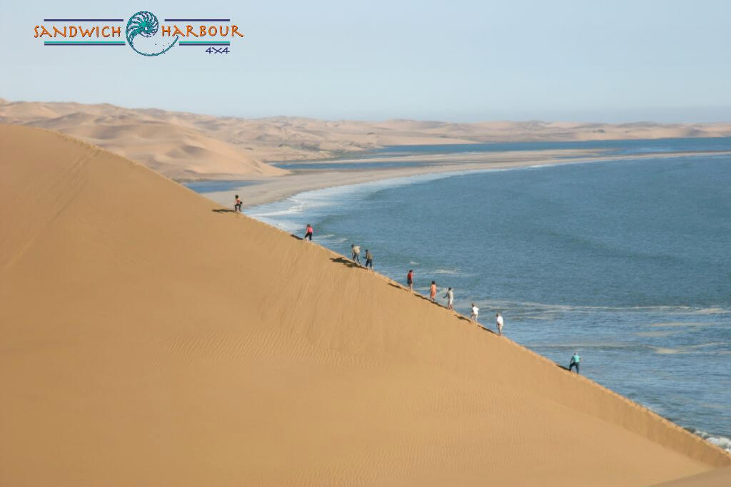 Sandwich Harbour 4x4 - Namibia Safari, Holiday & Travel Information
