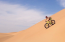 Bicycle Tours & Rentals
