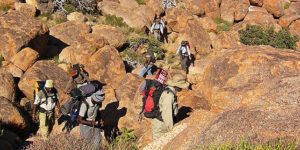 Hiking Trails & Walking Safaris