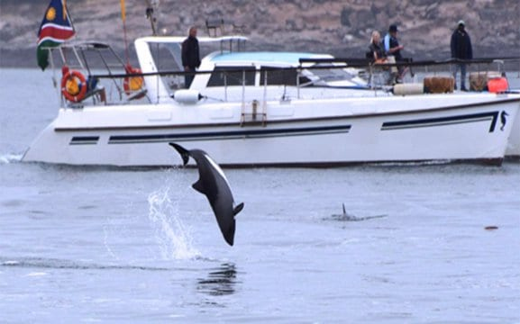 Scenic boat tours from Luderitz Waterfront