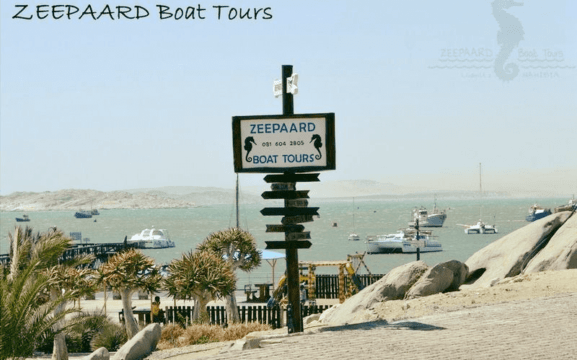 Welcome - Zeepaard Boat Tours - activities in Luderitz