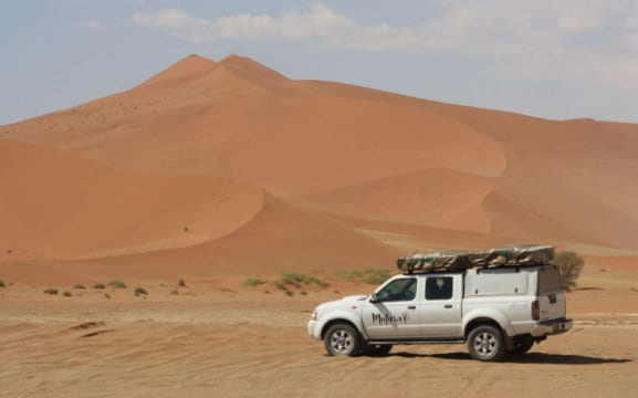 Mufasa Car Rental & Safaris